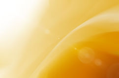Yellow abstract and sunlight backgroud. Stock Photos