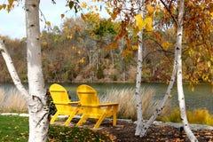 Yellow Adirondack Chairs. In autumn Stock Photography