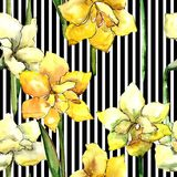 Yellow amaryllis. Seamless background pattern. Fabric wallpaper print texture. Aquarelle wildflower for background, texture, wrapper pattern, frame or border Stock Image