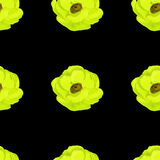 yellow anemone watercolor seamless pattern Royalty Free Stock Photos