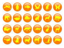 Yellow animal icons Stock Photography