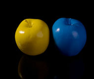 Yellow apple and blue apple. Royalty Free Stock Image