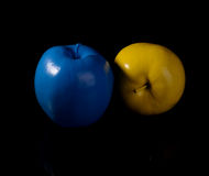 Yellow apple and blue apple. Stock Photos