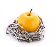 Yellow apple with chain isolated Royalty Free Stock Images
