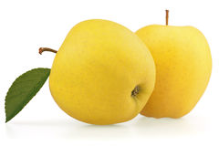 Yellow apple fruits Royalty Free Stock Image