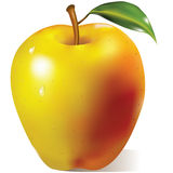 Yellow apple with green leaf Royalty Free Stock Image