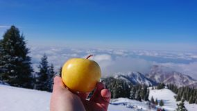 Yellow Apple in hand on the background of snowy mountains and coniferous trees. The basic frame of the hand and the Apple. Blurred background with snow on the stock photo