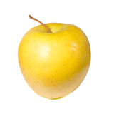 Yellow apple in a white background Stock Images
