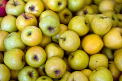 Yellow apples royalty free stock images