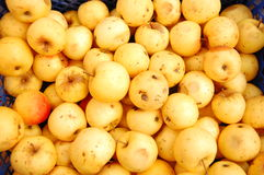 Yellow apples in boxes royalty free stock photos