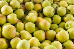 Yellow apples at farm stand Stock Photography
