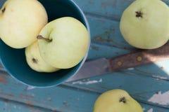 Yellow apples. Royalty Free Stock Photo