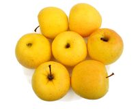 Yellow apples, isolated Stock Images