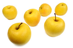 Yellow apples, isolated Royalty Free Stock Photos