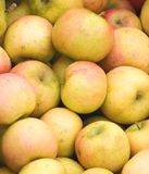 Yellow apples at a market. Royalty Free Stock Photo