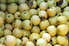 Yellow Apples For Sale Stock Images