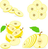 Yellow apples slices, collection of  illustrations Royalty Free Stock Photography