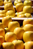 Yellow apples, staggered Royalty Free Stock Image