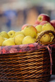 Yellow apples in a wooden basket. Vertical photo Royalty Free Stock Photography