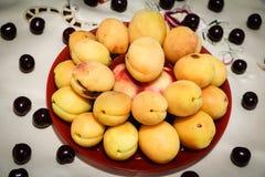 Yellow apricot Stock Image