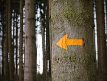 Yellow arrow giving directions,. Yellow arrow giving directions in the woods, concept for help when being lost, support, orientation, a way out of the woods and Royalty Free Stock Photos