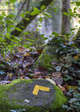 Yellow arrow on a stone in a long distance footpath Stock Photography