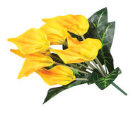 Yellow artificial anturium Royalty Free Stock Image