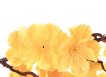 Yellow artificial flowers. Stock Photo