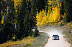 Yellow aspen trees. A car driving between yellow aspen trees at Cedar Breaks National Monument, Utah, USA royalty free stock photography