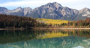 Yellow aspens reflected in the Rocky Mountains 4K stock footage