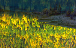 Yellow autumn,abstract reflection in the lake Stock Photography