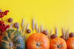 Yellow autumn background. Autumn harvest festival. Stock Photos