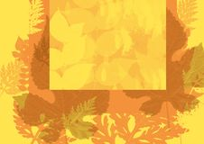 Yellow autumn background leaf Royalty Free Stock Photo