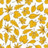 Yellow autumn fallen leaves seamless pattern Royalty Free Stock Image