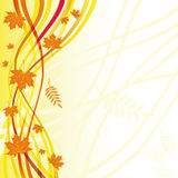 Yellow autumn floral background Royalty Free Stock Image