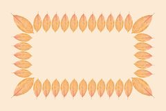 Yellow autumn leaf background, frame and border, copy space photo stock image