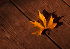 Yellow autumn leaf old wooden background Royalty Free Stock Photos