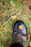Yellow autumn leaf on a trekking boot Stock Images