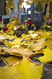 Yellow autumn leafs on cemetery Royalty Free Stock Images