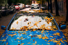 Yellow autumn leaves on a blue car Stock Photography