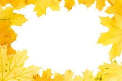Yellow autumn leaves - fall - frame Stock Photos