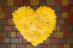 Yellow autumn leaves laid in the form of a heart on the pavement.  royalty free stock images