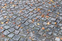 Yellow autumn leaves on the old paving roadway. Royalty Free Stock Images