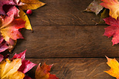 Yellow Autumn Leaves On Background Old Wood Stock Image