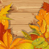 Yellow autumn leaves wooden background Stock Photos