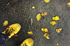 Yellow autumn shoes Royalty Free Stock Photos