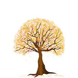 Yellow autumn tree royalty free illustration