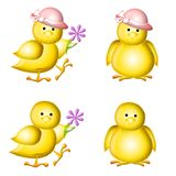 Yellow Baby Easter Chicks Clip Art. Adopt a baby chick! An illustration featuring a group of 4 adorable little baby yellow chicks wearing hats and holding Stock Images