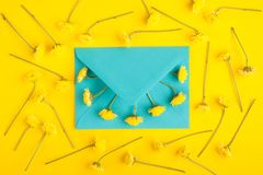 Cyan envelope and chrysanthemum flowers. Yellow background with cyan envelope and chrysanthemum flowers. Top view. Flat lay stock images
