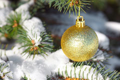 Yellow ball on the Christmas tree Royalty Free Stock Image